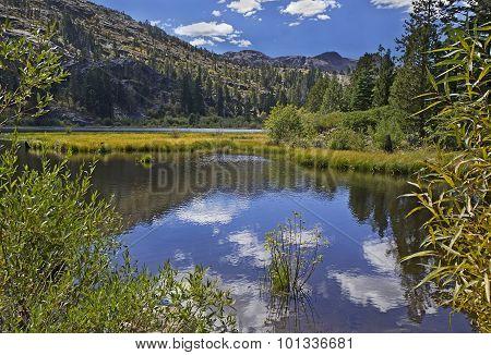 Lily Pond Lake, South Lake Tahoe, Ca