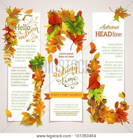Vector Set Of Vertical Autumn Banners.