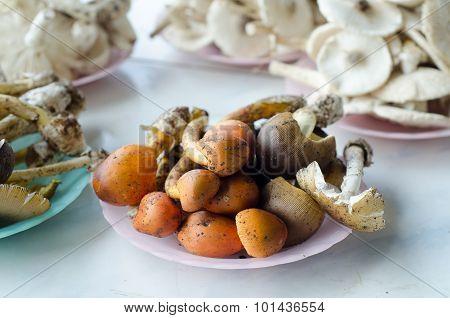 wild mushroom sell in local market thailand. poster