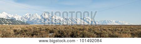 Teton Panorama