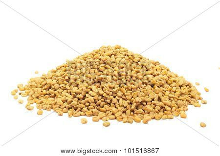 Pile of Organic Fenugreek.