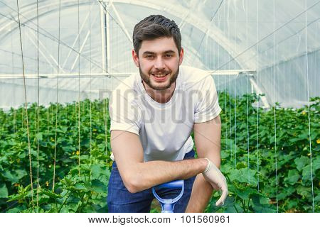 Young photogenic guy is working in a greenhouse.