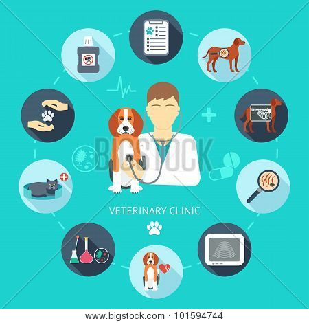 Veterinary Flat Icon Set. Veterinary Banner, Background, Poster, Concept. Vet Clinic. Flat Design. V