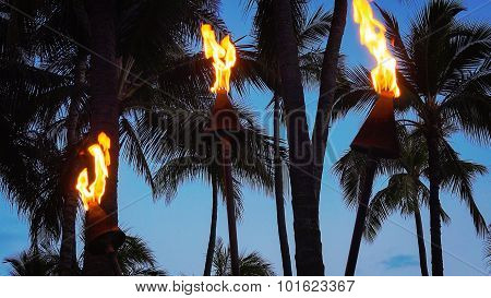 Tiki Torches Burning On Waikiki Beach At Night