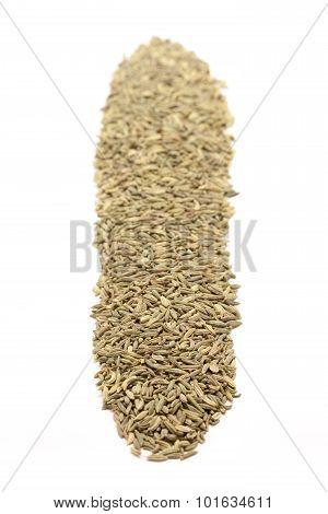 Row of Organic Aniseed.