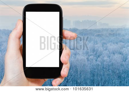Smartphone With Cut Out Screen And Frozen Forest