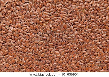 Organic Linseed or Flaxseed.