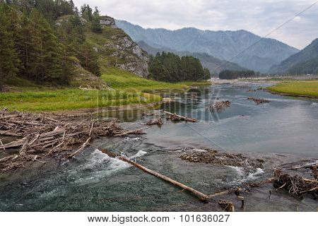 Wooden Logs On Mountain River Flowing Along Little Canyon