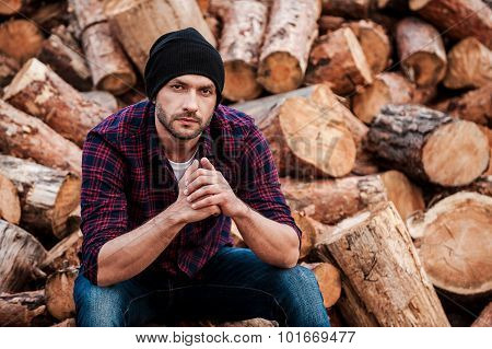 Day Dreaming On The Logs.