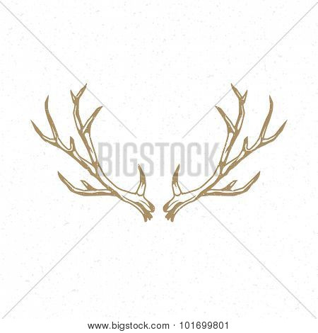 Deer Horns hand drawn logo emblem template vector vintage design element.