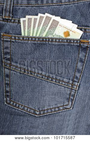 Jeans with Polish money