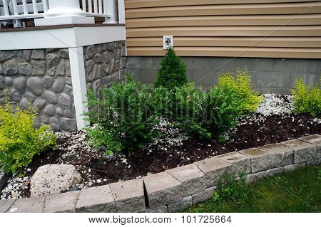 Bushes in Front of a House