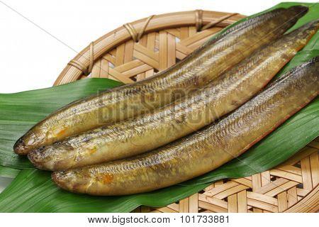 ginpo, tidepool gunnel, ingredients of tempura
