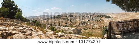 Panorama From Shepherd's Field, Beit Sahour, East Of Bethlehem, Palestinian Territories