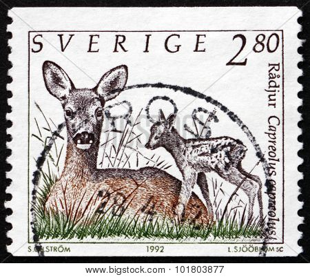 Postage Stamp Sweden 1993 European Roe Deer With Fawn