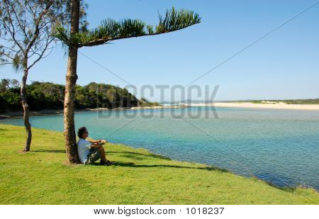 Man Sitting Under A Tree By The Sea