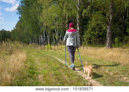 Young woman goes Nordic walking outdoors with small dog Griffon Bruxellois breed. Back view