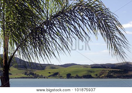 Mangonui Harbor - New Zealand
