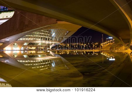 City Of The Arts And The Sciences In The Night