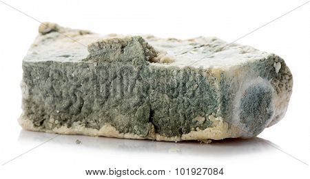 White background studio image of a decayed rotten cheese. poster