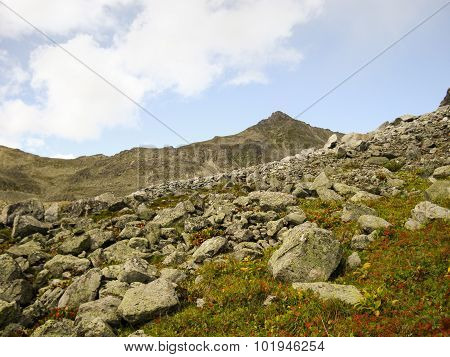 Valley in the mountains from the rocks penetrated grass