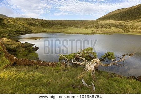 Azores Landscape With Lake And Cedrus In Pico Island, Portugal