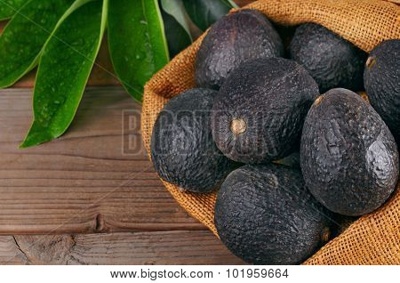 Still life  with Hass avocados in a burlap sack on a wood background with leaves. Horizontal with copy space.