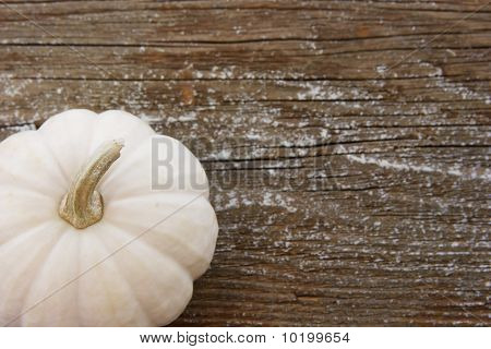 White Pumpkin Against Wood Board With Shallow Depth Of Field
