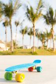 blue shortboard penny board with multicolored wheels stands on the track near the palm trees poster