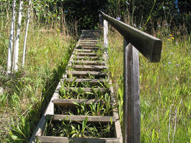 Stairs And Rail