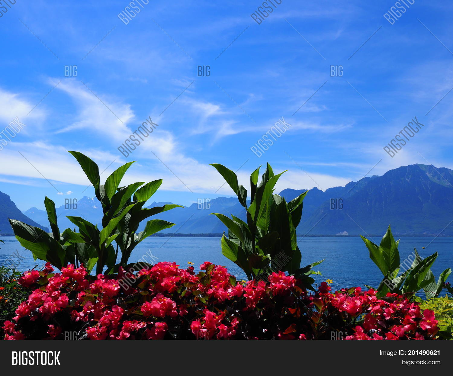Beauty colorful image photo free trial bigstock beauty colorful flowers on promenade in montreux city at lake geneva in switzerland with panoramic view izmirmasajfo