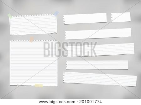 White ruled, striped note, copybook, notebook paper stuck with adhesive tape on grey background