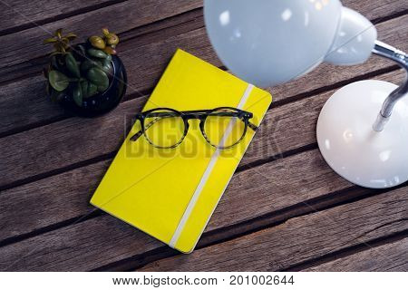 Overhead of diary, spectacles, pot plant and table lamp on wooden table