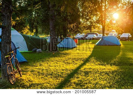 Tents Camping area in beautiful natural place with big trees and green grass. Sunset shimmer
