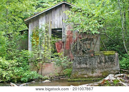 an old dilapidated gristmill almost taken over by the forest