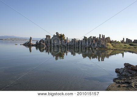 Reflection Of Tufa In Mono Lake