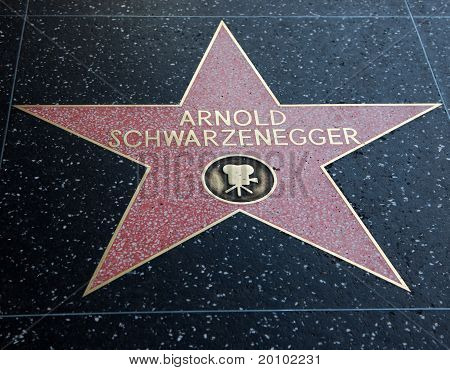 Arnold Schwarzenegger Hollywood Star