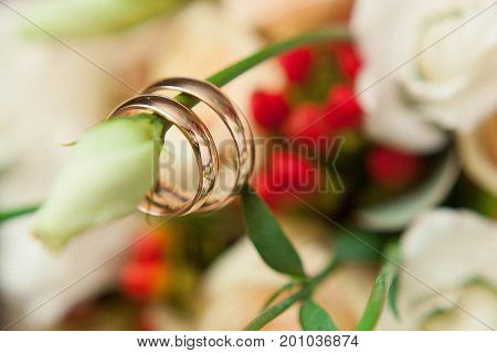 two wedding rings haging on rose flowers