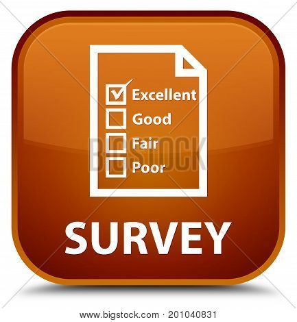 Survey (questionnaire Icon) Special Brown Square Button