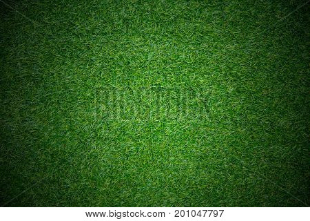 match play field sport concept grass background space for text
