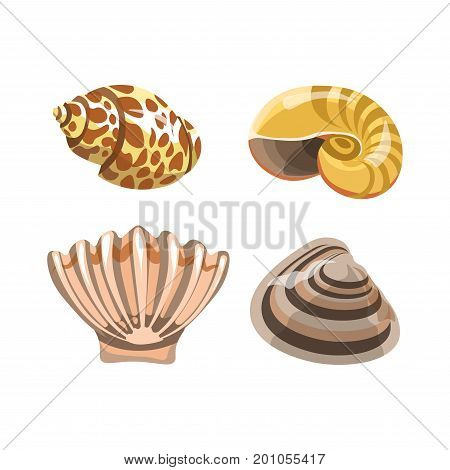 Amazing shiny curved sea shells with brown spots, long stripes and uneven surface isolated cartoon vector illustrations set on white background. Underwater small creatures that lives on bottom.