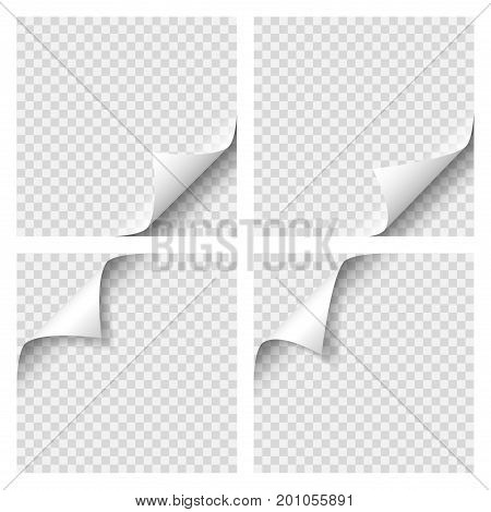 Set of Curly Page Corner. Blank sheet of paper with page curl with transparent shadow. Realistic vector illustration EPS 10. Graphic element for documents, templates, posters, flyers and advertising