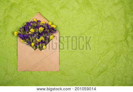 Envelope with dry wildflowers on a rumpled paper background. Backgrounds and textures.