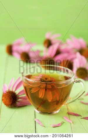 Cup of echinacea tea on green wooden table.