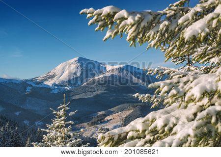 Winter Petros Mountain
