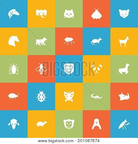 Collection Of Lamb, Bumblebee, Monarch And Other Elements.  Set Of 25 Alive Icons Set.