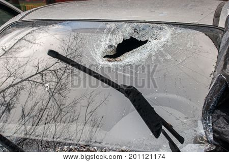 A hole in the windshield of a car from a fallen tree