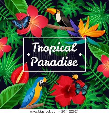 Flat design tropical paradise frame with amazing exotic flowers birds and butterflies vector illustration