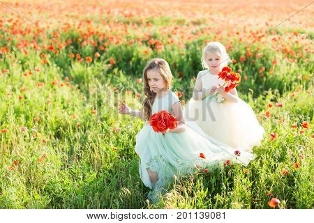 little girl model, childhood, fashion, wedding, spring, summer concept - two young girls bridesmaids walking on flowered field, with hands full of poppy flowers,