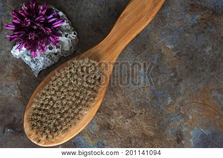Spa and Wellness - Bath brush for Cellulite Massage. With copy space
